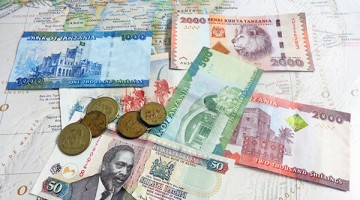 Currency. By Udare Safari