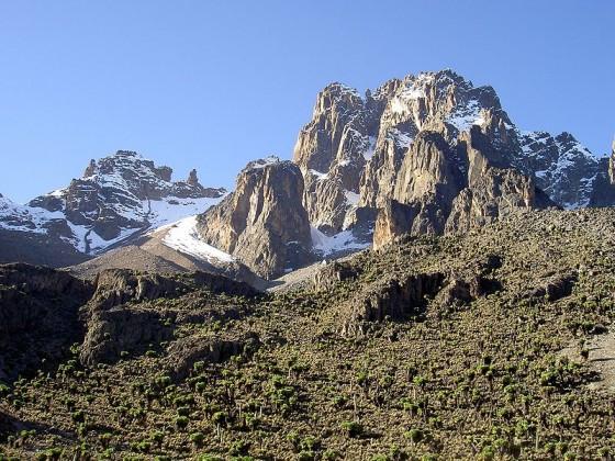 Mount Kenia National Park. Wikipedia