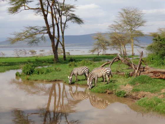 Luo itinerary. By Udare Safari