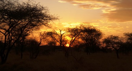 Fiome itinerary. By Udare Safari