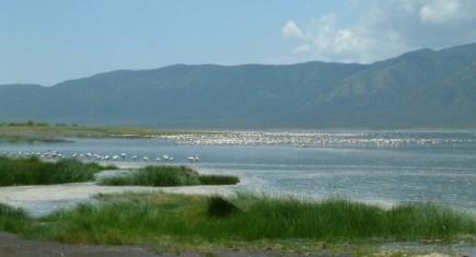 Lake Bogoria National Reserve. Wikipedia