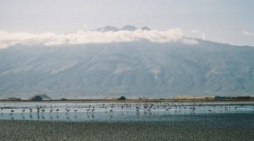 Lake Natron. By Udare Safari