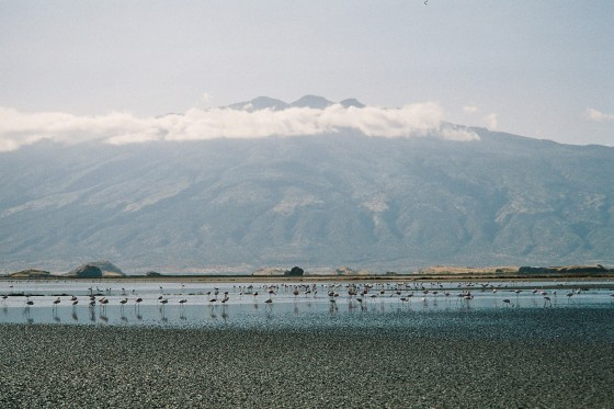 Lake Natron. By Udare Safari