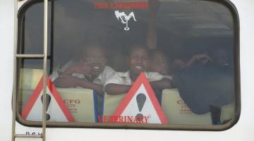 Warnings. By Udare Safari