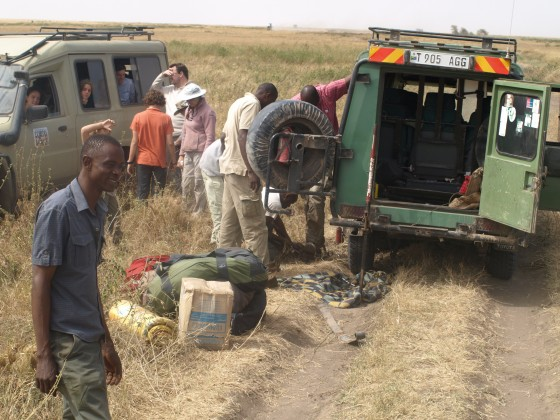 Vehicles for safaris. By Udare Safari